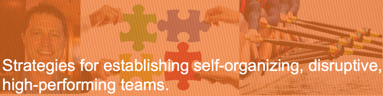 Strategies for building self-organizing, disruptive, high-performance teams @ barrypatterson.com